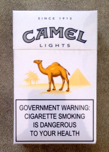 camel lights 2.jpg